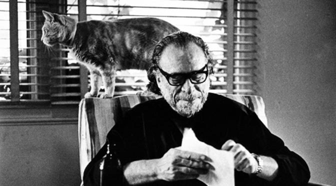 Bukowski: donne, birra, letteratura e gattini!