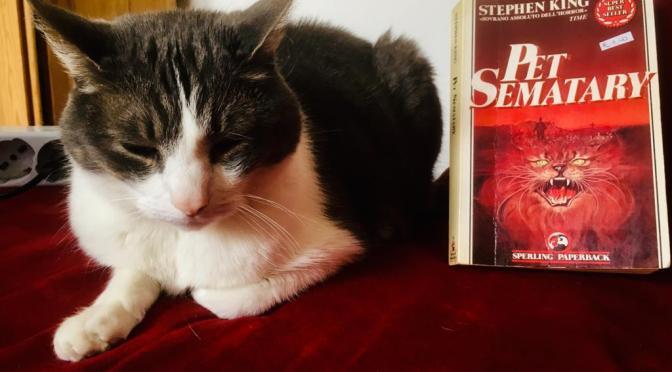 Stephen King, Pet Sematary e la paura più grossa di ognuno di noi